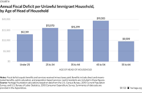 the fiscal cost of unlawful immigrants and amnesty to the u s immigration costs 2013 chart 8