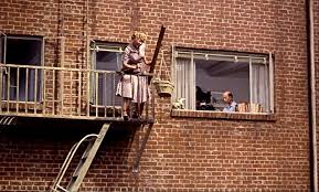 reviews comet over hollywood page  sara berner lowers their dog down into the courtyard frank handy sits inside the apartment