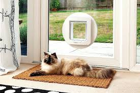 cat door essential guide to cat doors for windows sliding glass doors cat door interior canada cat door installation kit
