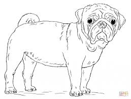 pug coloring page free pug coloring images coloring pages library