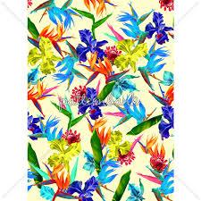 Topical Pattern Beauteous Topical Pattern PATTERN Pinterest