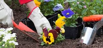Gardening in the Sun: What to Do with Your Garden during Summer? by hoselink.com.au