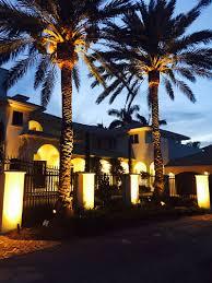 delray beach tree lighting. Delray Beach FL Lighting Company Tree