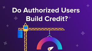 Authorized users can also help boost the overall amount of rewards a household can earn. Do Authorized Users Build Credit