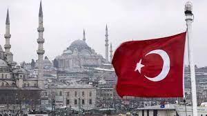 مقطع جديد لرجل المافيا يهز تركيا.. ما علاقته بصهر أردوغان ووزير الداخلية؟