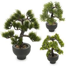 bonsai tree for office. Image Is Loading Artificial-Office-Desk-33cm-Bonsai-Tree-Black-Plant- Bonsai Tree For Office D