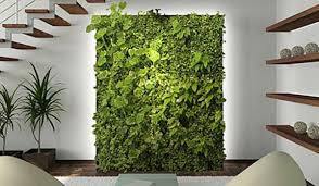 selecting the perfect structure vertical gardening