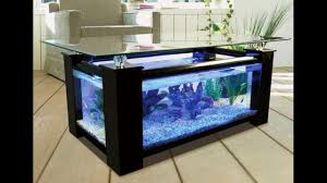 fish tank designs for home