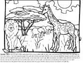 Small Picture Creation Bible Coloring Pages
