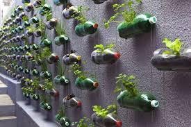 Cheap Vertical Garden Ideas