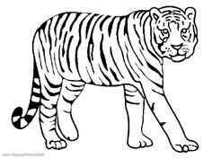 Small Picture Little tiger coloring page Mollys ABC Book Pinterest Tigers