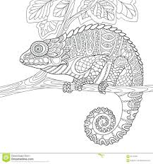 Chameleon Coloring Book Stylized Cartoon Isolated White Background ...