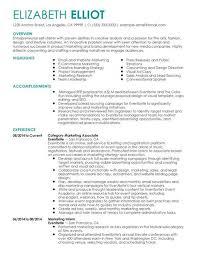 Resume For Self Employed Sample Costumepartyrun