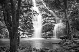 black and white nature wallpaper quotes. Black And White Waterfall Inside Nature Wallpaper Quotes