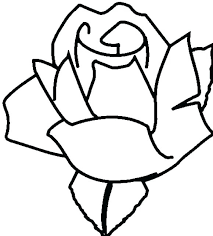 Coloring Page Of A Rose Coloring Page Of A Se Pictures Flowers Pages