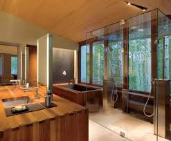 japanese bathroom design. Japanese Bathroom Design: Traditional Touch In Modern Lifestyle : Feng Shui With Lavish Wooden Design A