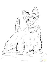 Corgi Coloring Pages Beagle Coloring Pages Cute Dogs Coloring Sheets