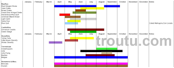 Fly Fishing Hatch Charts Trout Pro Store