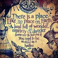 Alice In Wonderland Quote Awesome KitchenAid Rkp48M48x Refurb Of KP48M48X Pro 48 Stand Mixer 48qt Large