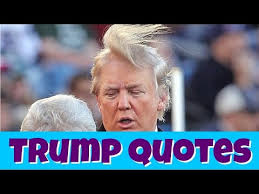 Stupid Trump Quotes Mesmerizing 48 Stupid Donald Trump Quotes 4816 YouTube