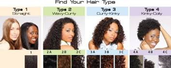 Natural Curl Pattern Delectable Natural Hair Type According To Your Hair Curl Pattern