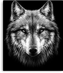 wolf face black and white. Exellent Black Wolf Face By HEARTBEATS For Face Black And White