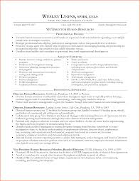 Gallery Of 7 Sample Resumes For Experienced It Professionals
