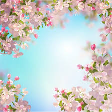Cherry Blossom Backdrop Leowefowa 6x6ft Cherry Blossom Backdrop Nature Spring Blooming Fresh Flowers Backdrops For Photography Blue Sky Outdoor Bridal Shower Decoration