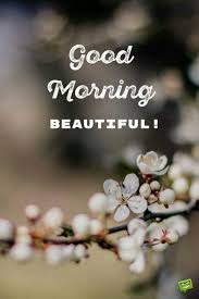 34656613 Fg742 Good Morning X Good Morning Good Morning