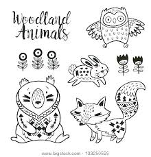 Coloring Pages Forest Animals Woodland Animals Coloring Pages Forest Animal Baby Benneedham Info