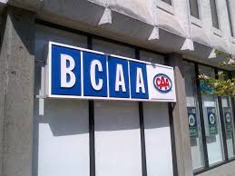 Image result for bcaa