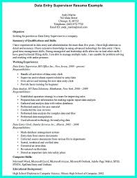 Data Entry Resume Sample Sarahepps Com