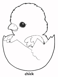 Small Picture Trend Chick Coloring Pages 28 For Picture Coloring Page with Chick