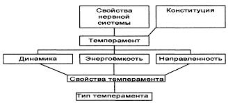 Темперамент личности Реферат Характеристика свойств темперамента