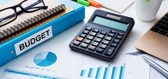 Project Management Project Budgets And Roi