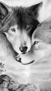 wolf iphone 5 wallpaper. Brilliant Wolf 2 Wolves Inside Wolf Iphone 5 Wallpaper R