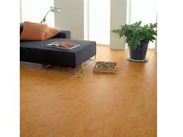 stylish linoleum floor covering amusing linoleum flooring ideas contemporary best idea home