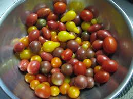 John Scheepers Kitchen Garden Seeds The Kitchen Cousins