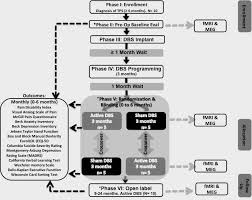 Phase 3 Clinical Trial Flow Chart Deep Brain Stimulation Of The Ventral Striatum Anterior Limb