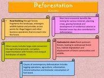 deforestation is necessary for development essay english essay deforestation is necessary for development essay