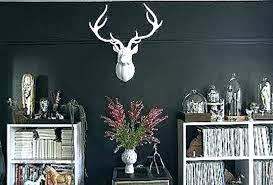 white deer head decorating with deer mounts amazing idea white deer head wall decor also ornament