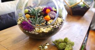 Succulents Part 2: Creative Ideas and Tips for Decorating with Succulents