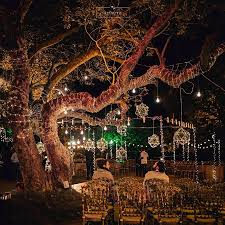 Wedding Tree Lights 20 Exceptionally Pretty Ways To Decorate Trees At Your