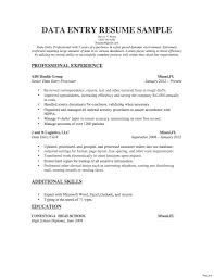 Famous As400 Resume Samples Ensign Documentation Template
