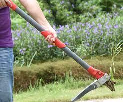 alterra tools garden weeder stainless