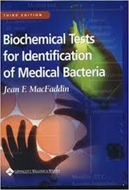 Biochemical Test Chart Identification Biochemical Tests For Identification Of Medical Bacteria