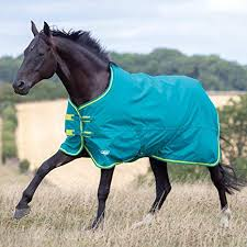 Shires Rug Size Chart Shires Tempest Original 50 Turnout Horse Rug Green Lime