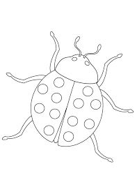 insect coloring book lady bug insect coloring page insect coloring book print out
