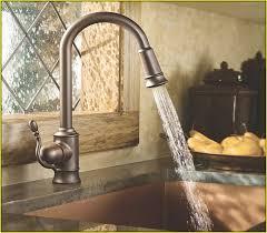 Delta Kitchen Faucet Replacement Parts Lowes