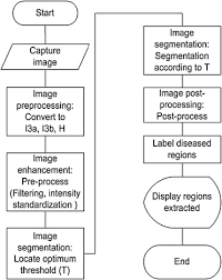An Image Processing Based Algorithm To Automatically